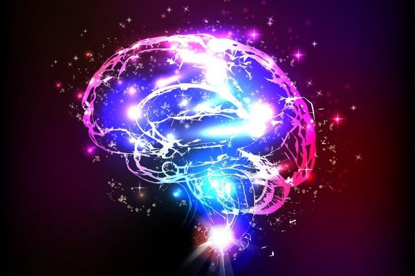 головного мозга